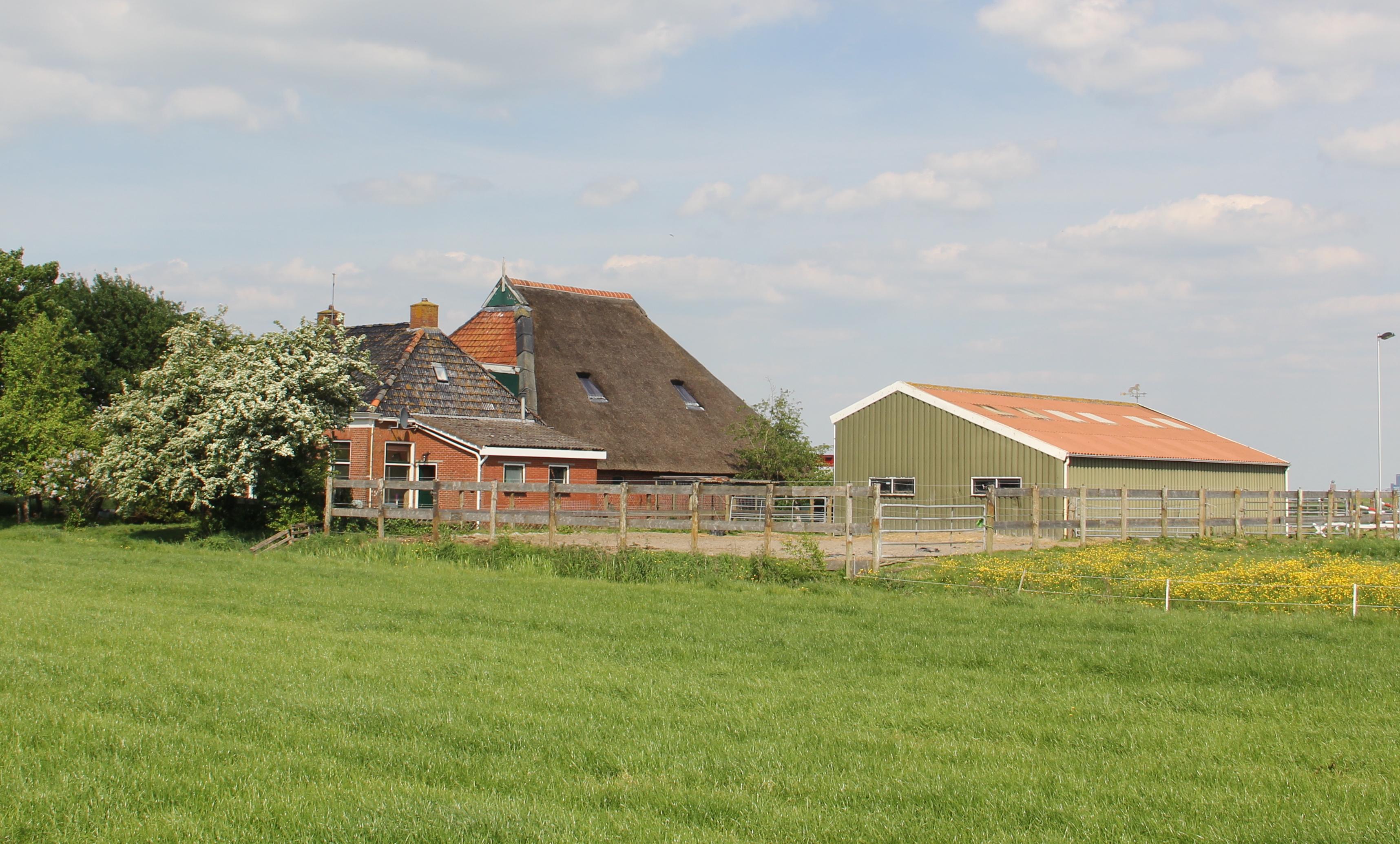 brandsma agrarisch vastgoed
